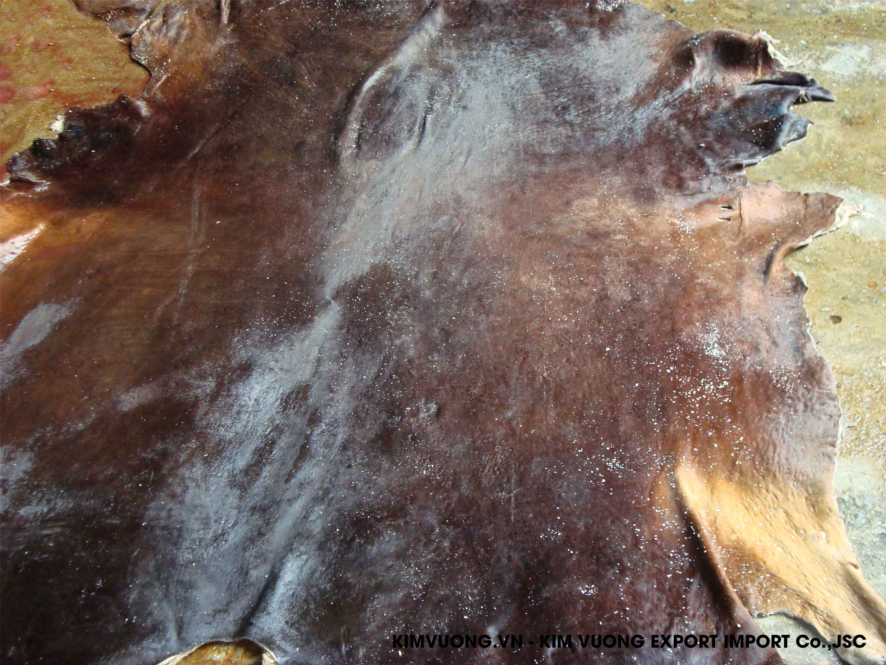 Wet salted buffalo skin